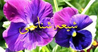 صفات شیعیان (۳)