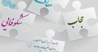 نقش عفت و حیا در رضایتمندی زن و شوهر (۱)