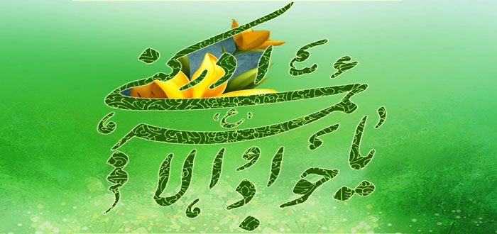 emam javad as (14)