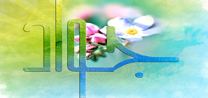 emam javad as (6)