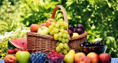 تغذیه در قرآن و حدیث