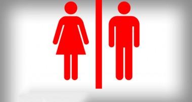زن یا مرد کدامیک برترند؟