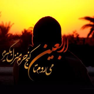 جذب کمک های مردمی موکب امام علی علیه السلام