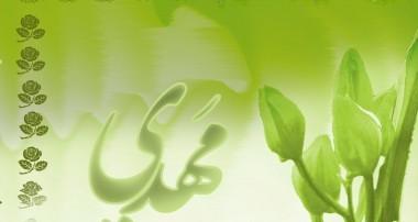 فضیلت تسبیح تربت سیدالشهداء (ع)
