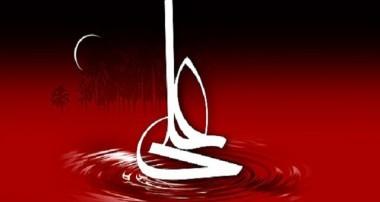 حضرت علي ـ عليه السلام ـ مظهر قدرت و شجاعت بوده، چگونه كسي جرأت ميكند كه دستهاي مباركش را ببندد و ايشان را بكشاند؟