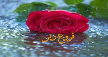 جهاد، تروريسم و مردم سالاري(3)