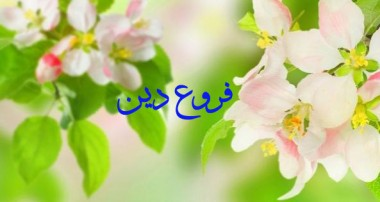 تولّی و تبرّی در قرآن کریم