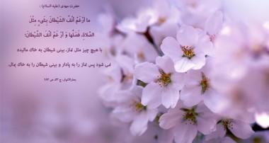 گفتگو با آیت الله ناصری