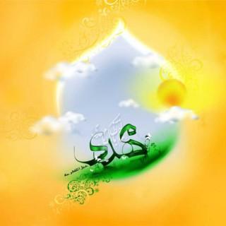 حجت بن الحسن العسکری (۱)