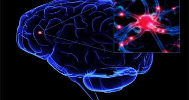 روزه در بیماریهای مغز و اعصاب