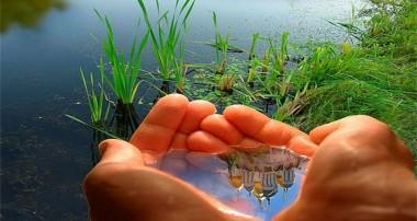 ممنوعیت آلوده کردن محیط زیست در اسلام