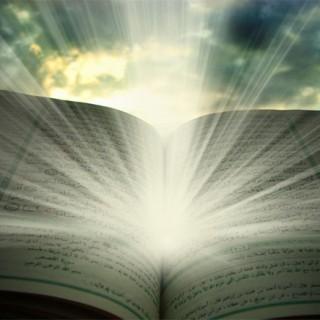 قرآن و تئوری تحوّل (۲)