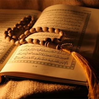 گفتگو با علامه سید محمدحسین فضل الله دربارهی زن در قرآن