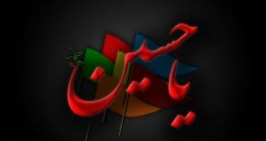 جلوه هایی از گل سرخ محمدی