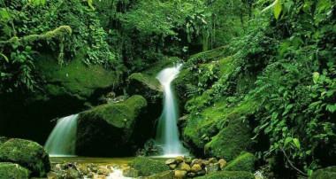 زیبایی های طبیعت و آثار بهداشتی آن