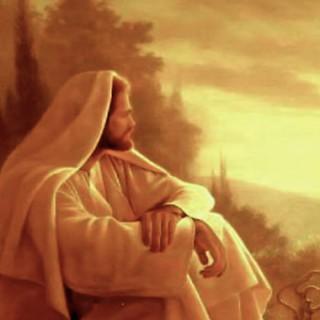 انبیاء شاهدین اعمال امت