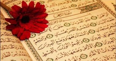 بررسی آیات ناظر به انسانشناسی در قرآن (۲)