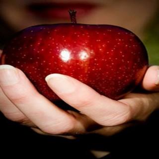 داروخانه طبیعی در میوه ممنوعه