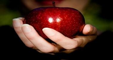 رژیم غذایی سالم برای خانمها جهت تقویت قلب