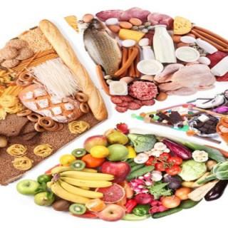 غذا چیست؟