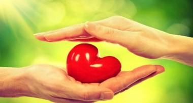 در زندگی بذر عشق بپاش