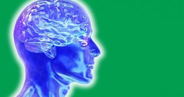 به منظور داشتن یک مغز سالم لازم است چه چیزهایی خورده شود