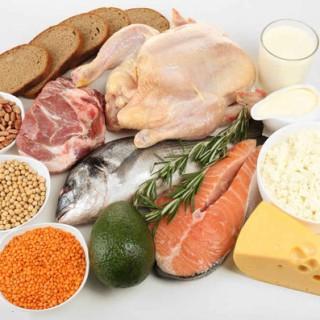 مواد غذایی که به راحتی قابل هضم میباشند