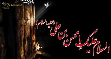 اعتراف ابن ابي دارم به لگد زدن عمر به حضرت زهرا(س) و شهادت حضرت محسن(ع)