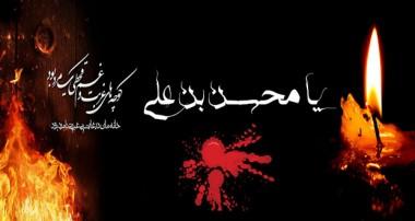 ویژه شهادت حضرت محسن علیه السلام