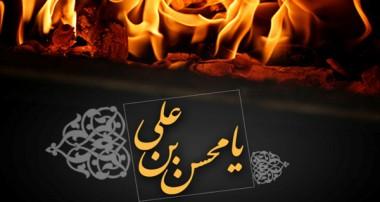 شبهاتی در مورد شهادت حضرت محسن (علیه السلام)