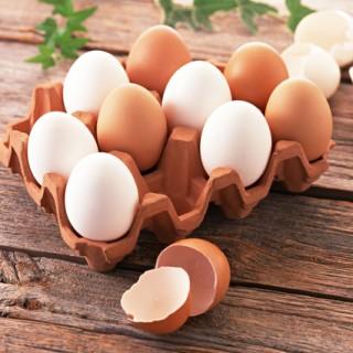 جایگزینهایی برای حساسیت به تخم مرغ