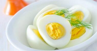 حقایق تغذیهای زردهی تخم مرغ