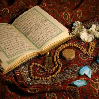 نماز شب، مرکب صعود انسان به سوی کمال است