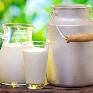 آیا نوشیدن شیر گرم کمک میکند سریعتر بخوابید؟