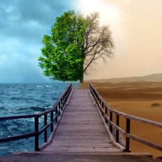 محبوبترین و مبغوضترین انسانها نزد خداوند متعال