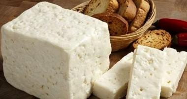 آیا خوردن پنیر برای شما مفید است؟