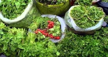 خواص نعمتهای الهی (سبزیجات)